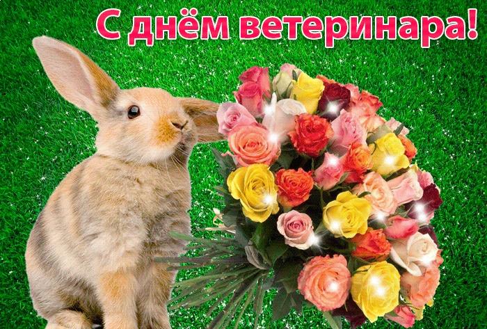 Открытки, день ветеринарного работника картинки поздравления прикольные